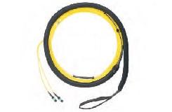 QuickNet™ MPO細径トランクケーブル